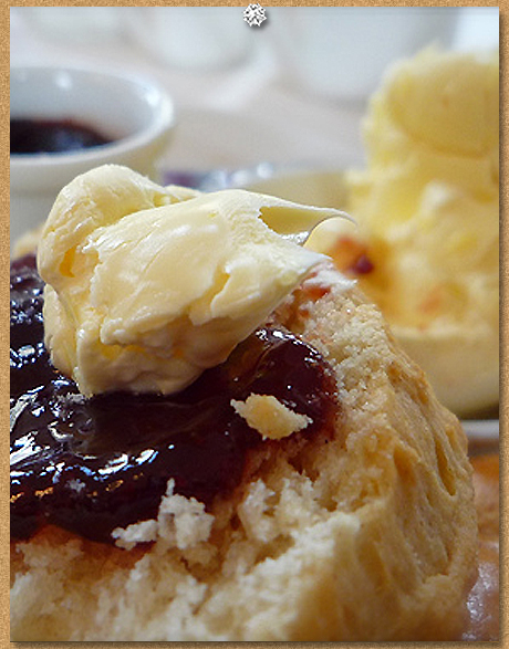Clotted cream scone